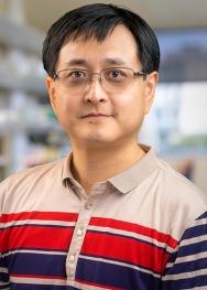 Nu Zhang Headshot