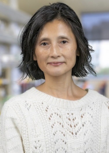 Chen-Pin Wang