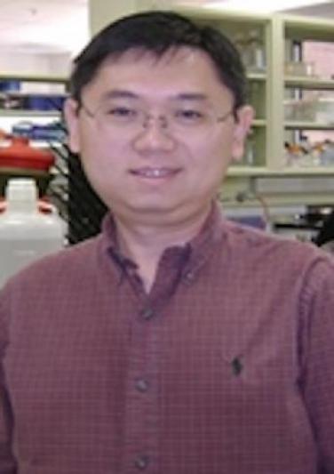 Xu, Zhenming